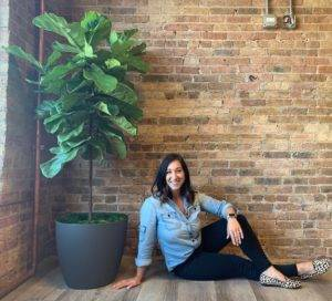 Fiddle leaf Fig in Stephanies home